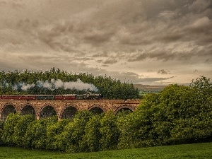 viewes, forest, Sky, bridge, trees, Train, Clouds