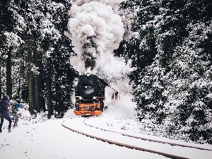 snow, Train, forest, People, winter