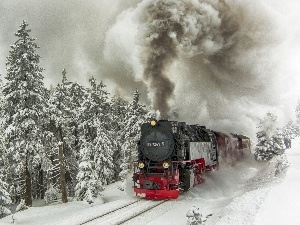 Train, winter, forest