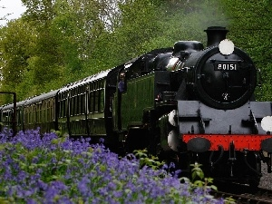 viewes, Flowers, locomotive, trees, Train