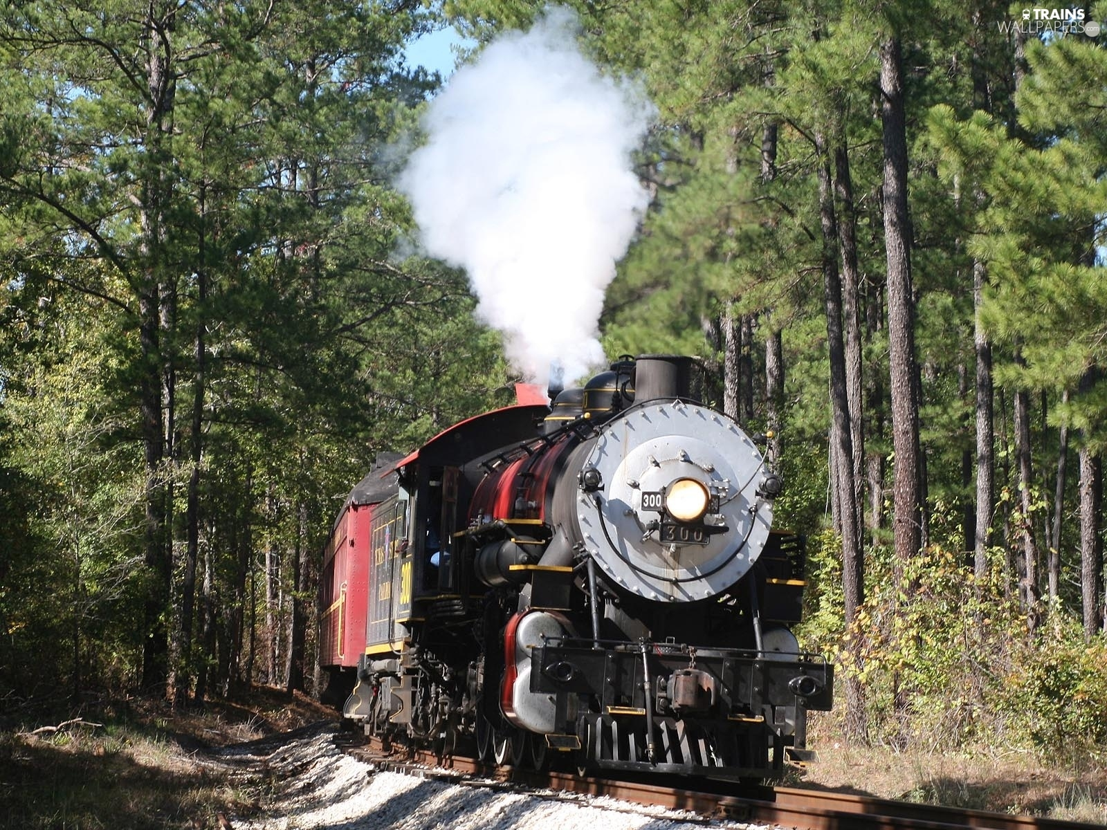 locomotive, forest