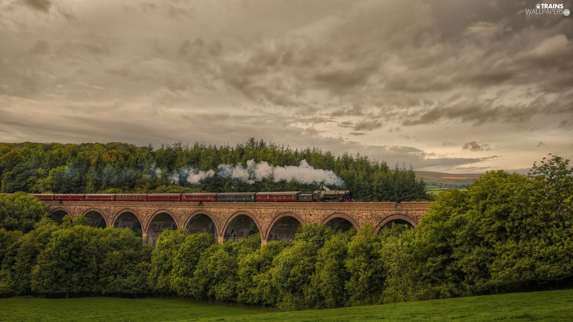 Sky, Train, trees, Clouds, bridge, forest, viewes