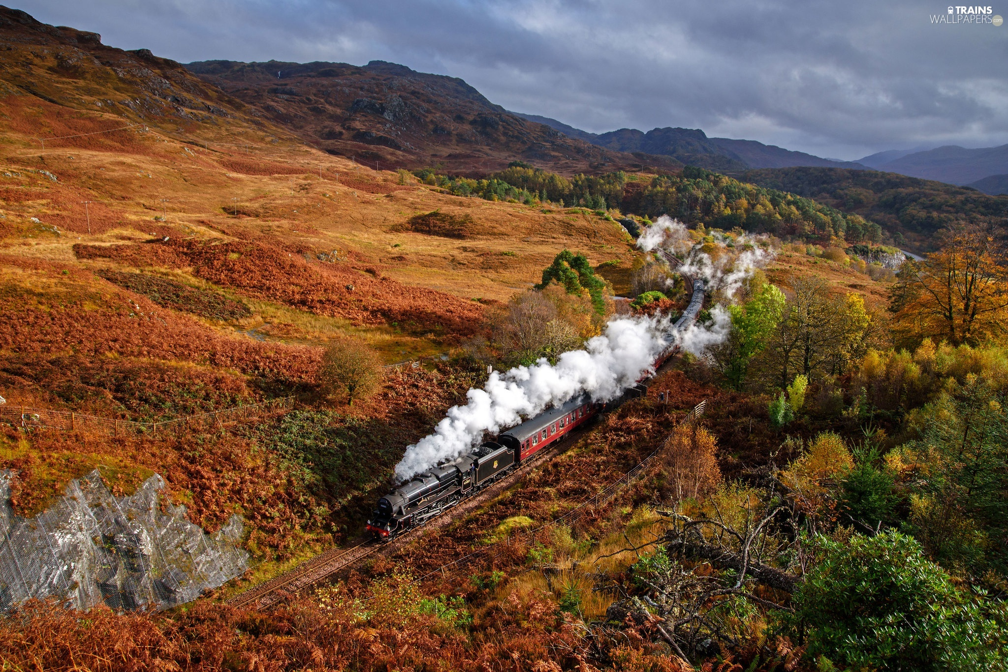Train, Mountains, trees, viewes, autumn